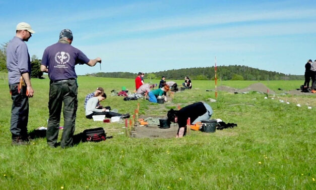 Arkeologer har hittat vallgravar i Birka