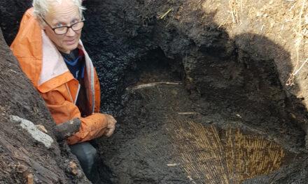 Unik stenåldersmiljö grävs fram i Östergötland