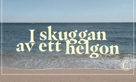 I skuggan av heliga Birgitta