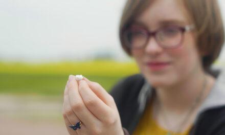 11-åring hittade 2 100 år gammal tand i Uppåkra