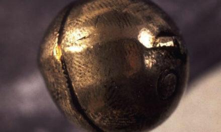 DNA från kulknappen matchar Karl XII:s DNA
