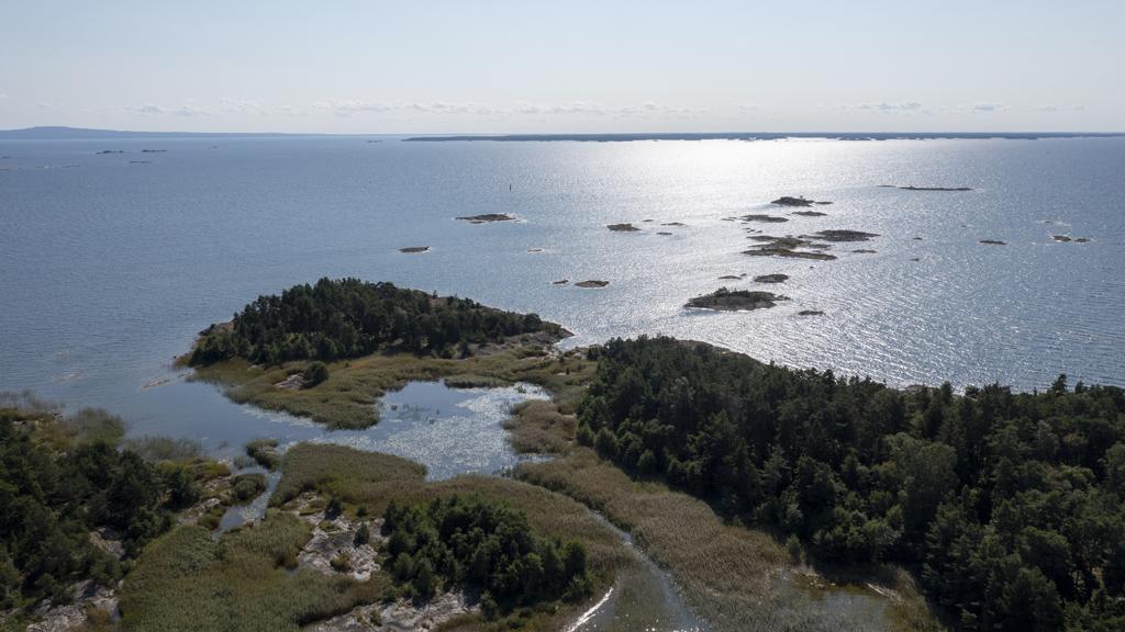 Spännande resultat av utgrävningar på Lurö