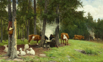 Nötkreatur i Sverige