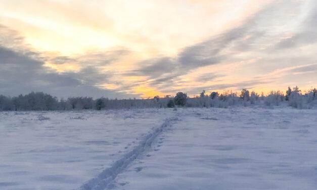 Samiska spår i skidsportens historia