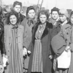 Statens historiska museer ska inrätta förintelsemuseet