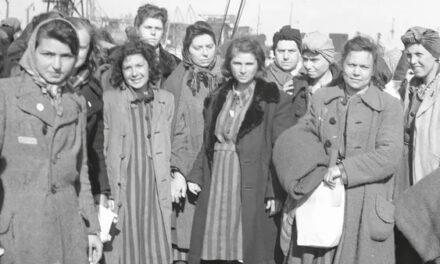 Statens historiska museer ska starta museet om Förintelsen
